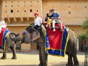 elephant-ride-in-jaipur